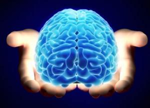 image-brain-small